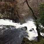 Foto Swallow Falls