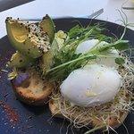 Advocado & Poached Eggs