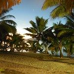 Foto Tamanu Beach Resort
