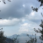 View of Capri from local walk