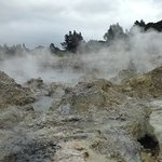 Hot springs at Hells Gate