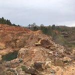 Ron Coleman's Crystal Mine照片
