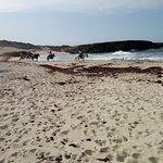 Thanks for choosing to ride with us! #aruba #horsebackriding #beach #tripadvisor
