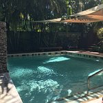 Travelers Palm Inn Photo