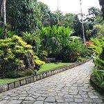 Foto de Jardim Secreto