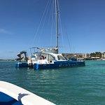Dophin Catamaran