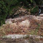 Purling Brook Falls의 사진