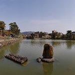 ภาพถ่ายของ Sarusawa Pond
