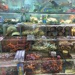 Фотография Sai Kung Promenade and Seafood Street