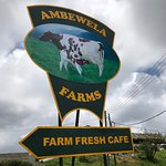 Foto de Ambewela Farms
