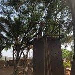 Foto de Goa's Ark