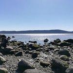 Photo of Croton Point Park