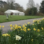 Borde Hill Garden Foto