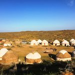 Yurt Camp Safari照片