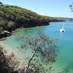 Manly Trail 6
