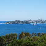 Manly Trail 8
