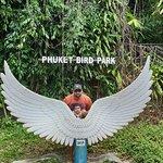 Фотография Phuket Bird Park