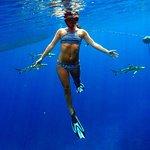 Moorea Ocean Adventures - Best underwater tour on Moorea!