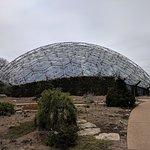 The Climatron Dome