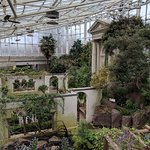 Inside the Shoenberg Temperate House