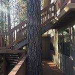 Bilde fra The Inn at Shasta Lake