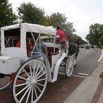 Horse & Buggy near Zehnder's Restaurant