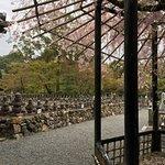 Foto van Adashino Nenbutsuji Temple