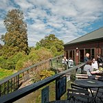 The cafe' deck overlooking the takahe.