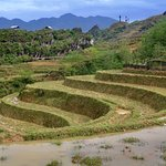 ภาพถ่ายของ Madame Linh Travel
