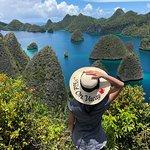 Pulau Wayagの写真