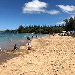 D.T. Fleming Beach Park Foto