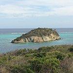 Photo of Tobago Cays