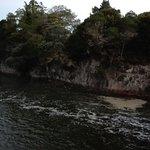 Photo of Whangarei Falls