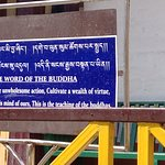 The word of the Budhha