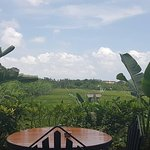 Foto de Barbacoa Bali