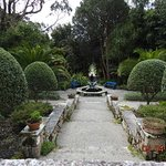Tresco Abbey Garden & Valhalla Collection의 사진