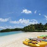 Royal Palm Island Resort Photo