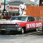 Hound Doggie