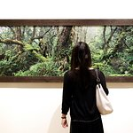 Foto Hawaii State Art Museum