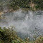 Photo of Waimangu Volcanic Valley