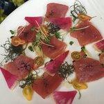 The great light sashimi style