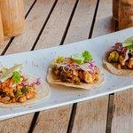 Fish tacos! One of many taco options