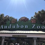 Photo de Audubon Zoo