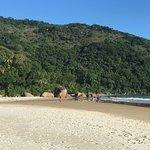 Photo de Lopes Mendes Beach