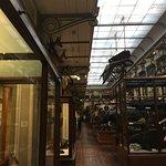Photo de National Museum of Ireland - Natural History