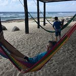 Relaxing in the hammocks