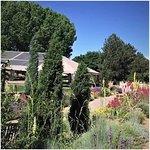 Denver Botanic Gardens 15 minutes drive to the north of Denver dentist Hampden Family Dental