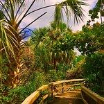 Lantana Nature Preserve
