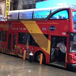 City Sightseeing New York Foto
