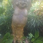 Variety of fauna flora and a cheeky Buddha or 2...